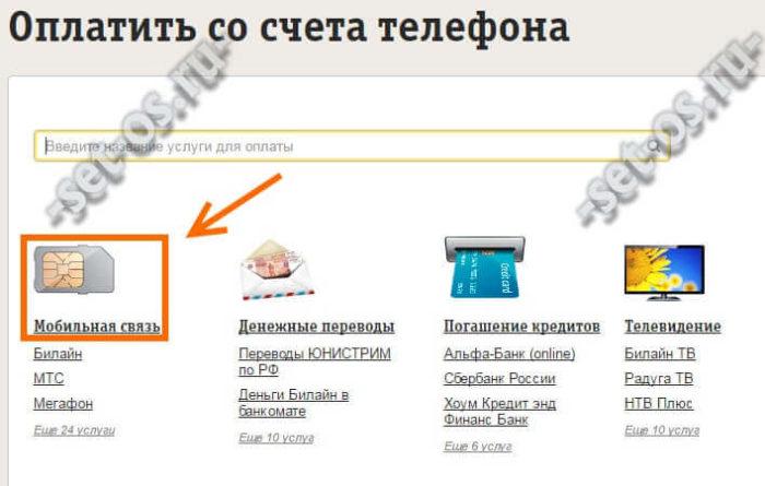 beeline-mobile-pay-2.jpg