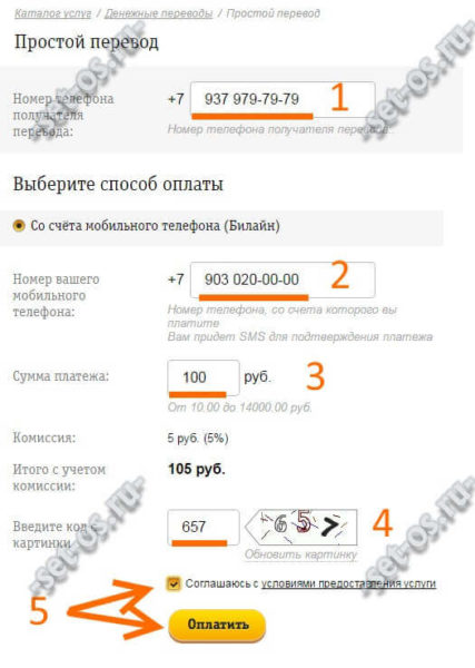 beeline-mobile-pay-4.jpg