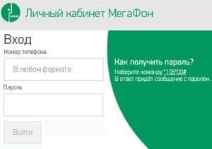 Lichnyy_kabinet_ot_Megafona_1-300x210.jpg