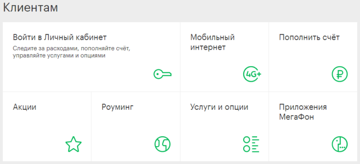 meg-ivanovo-1.png