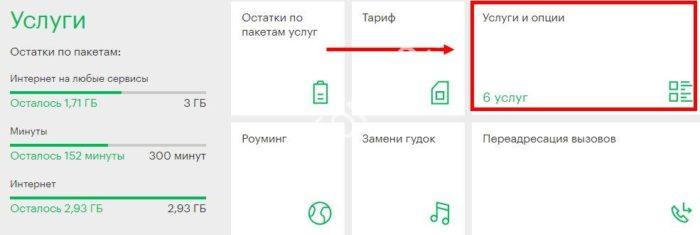 vsya-rossiya-4.jpg
